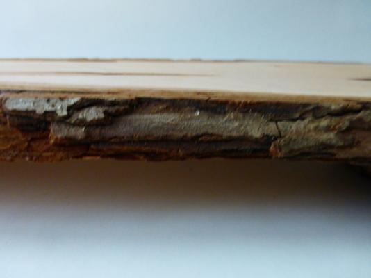 Hawthorn bark.JPG