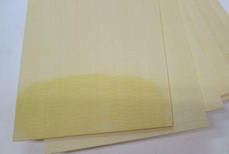 yellowcedar.jpg