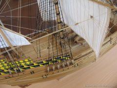 Mayflower-929.JPG