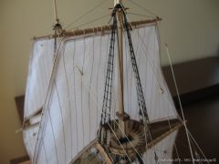 Mayflower-973.JPG