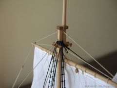 Mayflower-966.JPG