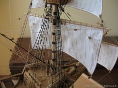 Mayflower-961.JPG