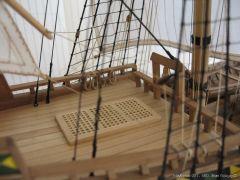 Mayflower-931.JPG
