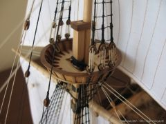 Mayflower-967.JPG