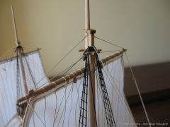 Mayflower-974.JPG