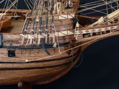 Mayflower 10