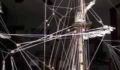 Vasa (781)