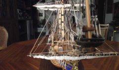 Vasa (784)