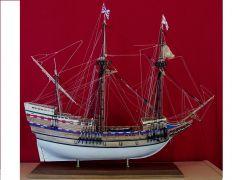 Mayflower by Muzzleloader