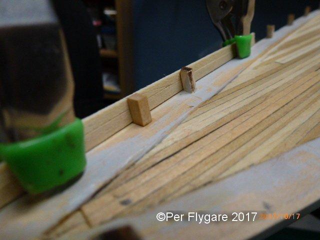 timberhead.JPG.16c73b15be192c27b6c9085d6766c444.JPG