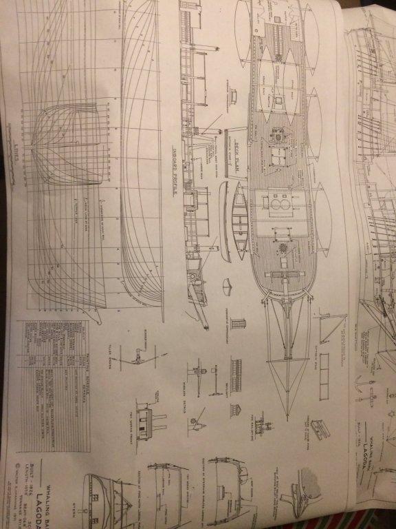 CF4C3B2C-B18A-4C8F-A3E6-A7E4685C767C.thumb.jpeg.f07d265a182c48d9cfc507d1debafb76.jpeg