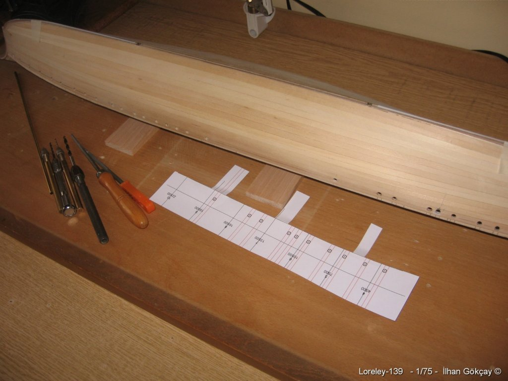 Loreley-139.thumb.jpg.695f79c199f11ebef9694b0cc2eee8bd.jpg
