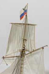 tender-290-00.jpg