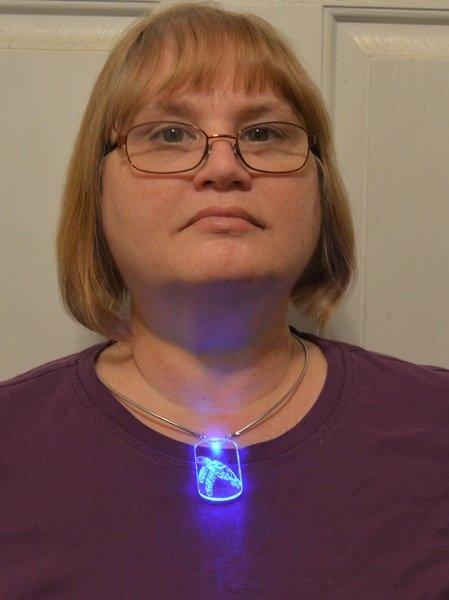 Glowing Turtle 1.JPG