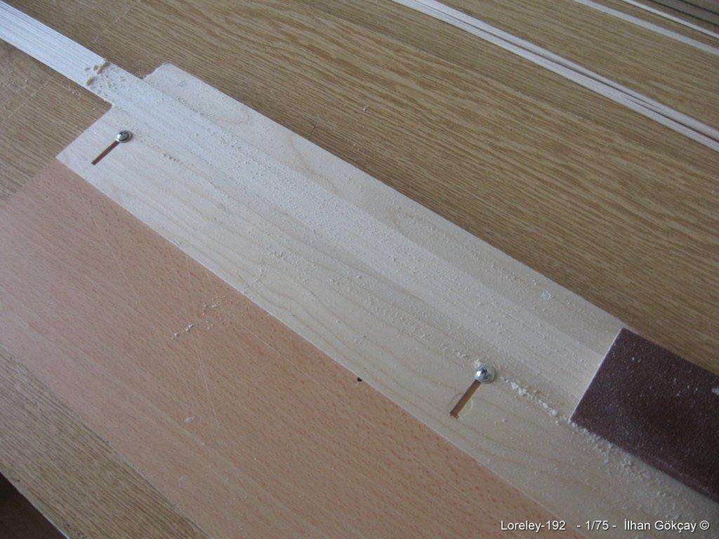 Loreley-192.thumb.jpg.cfed58422f58c1bdceca20f02f8f4387.jpg