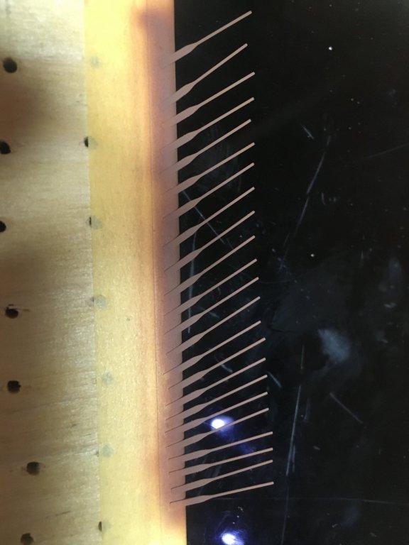 2C21D996-E19F-4EB7-88E5-603A50BF3F07.thumb.jpeg.8e1a13657985b94ca0fcda5d7807ba3e.jpeg