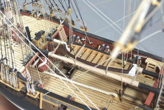 206904856_HMSFly133.jpg.735e5cce25eb72c3530e26cb789ae507.jpg
