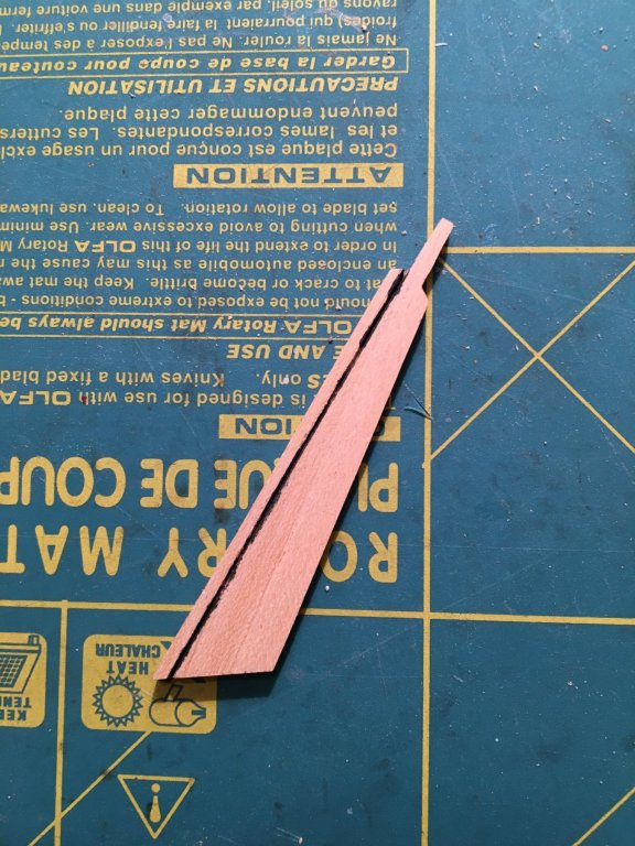 FF65F934-6C42-4449-8670-5BD7B471CD37.thumb.jpeg.87b48cbb2c73460491e9472204b42e4e.jpeg