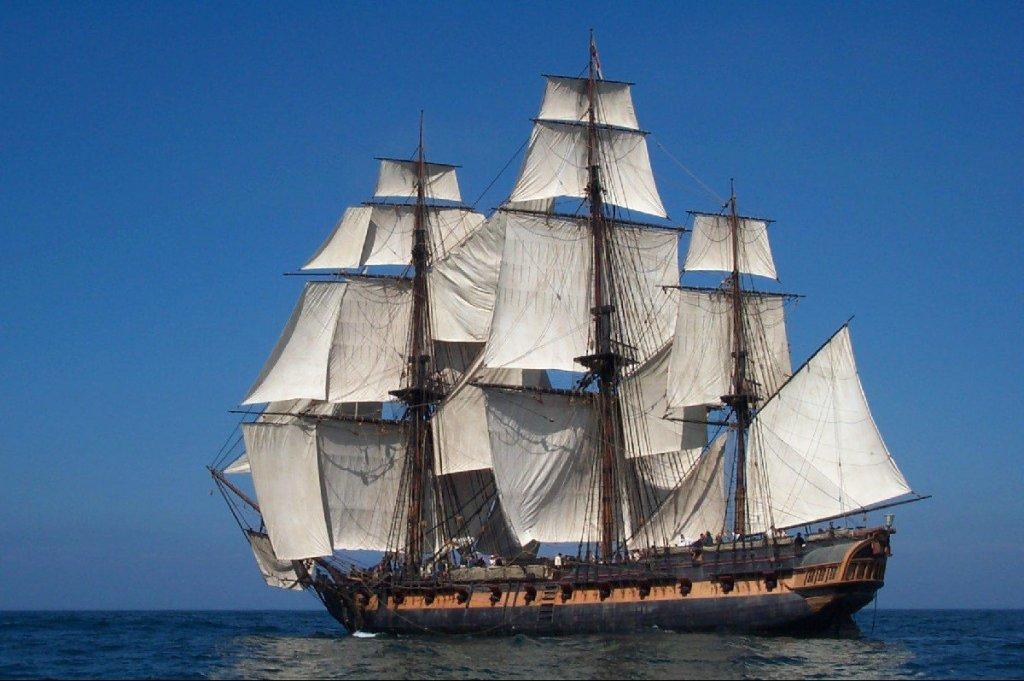 4ships-ROSE.thumb.jpg.044bcfbed382b775f200f69193f4e220.jpg