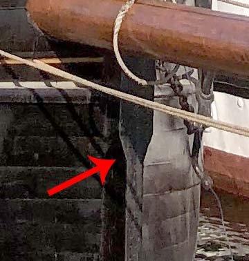 Deodar bow detail.jpg