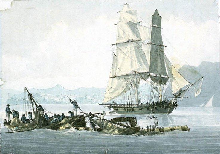 HMS_Speedy.jpg.f1792dba83c59697ae428613ab27905b.jpg