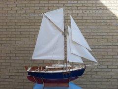 sail 7.jpg