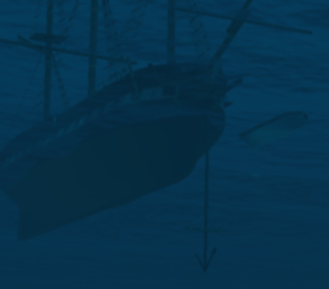 liffey_anchor_underwater.png.2b5108cebe2c0c0f1e929b11ad771871.png