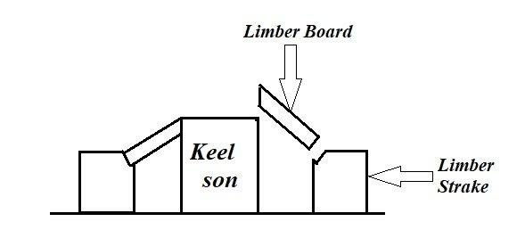 Limb cut-.jpg