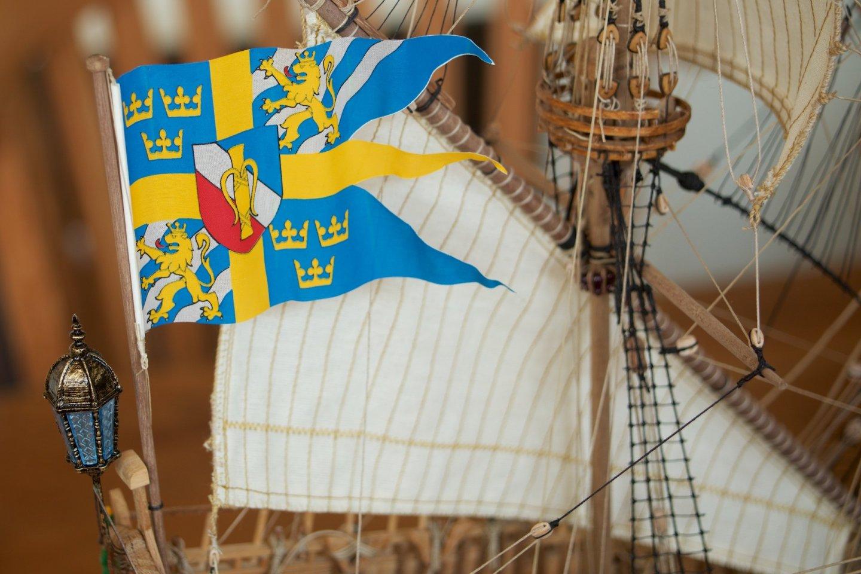 vasa-flags_003_20210227.thumb.jpg.d3292bb0fdebd20fc574f35c0fe5f502.jpg