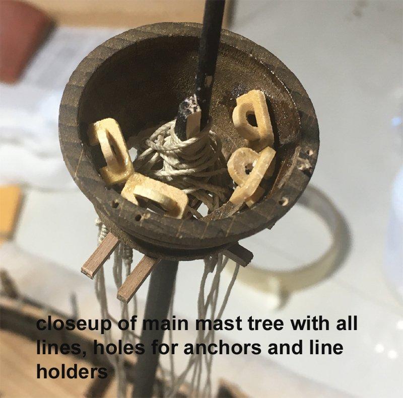 256197499_treecloseup.jpg.87bb8a7b96bd13f22675c449ca4579c9.jpg