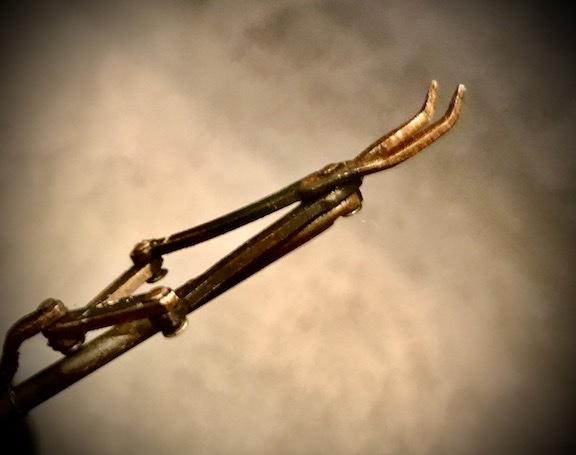 tool - 1 (1).jpeg