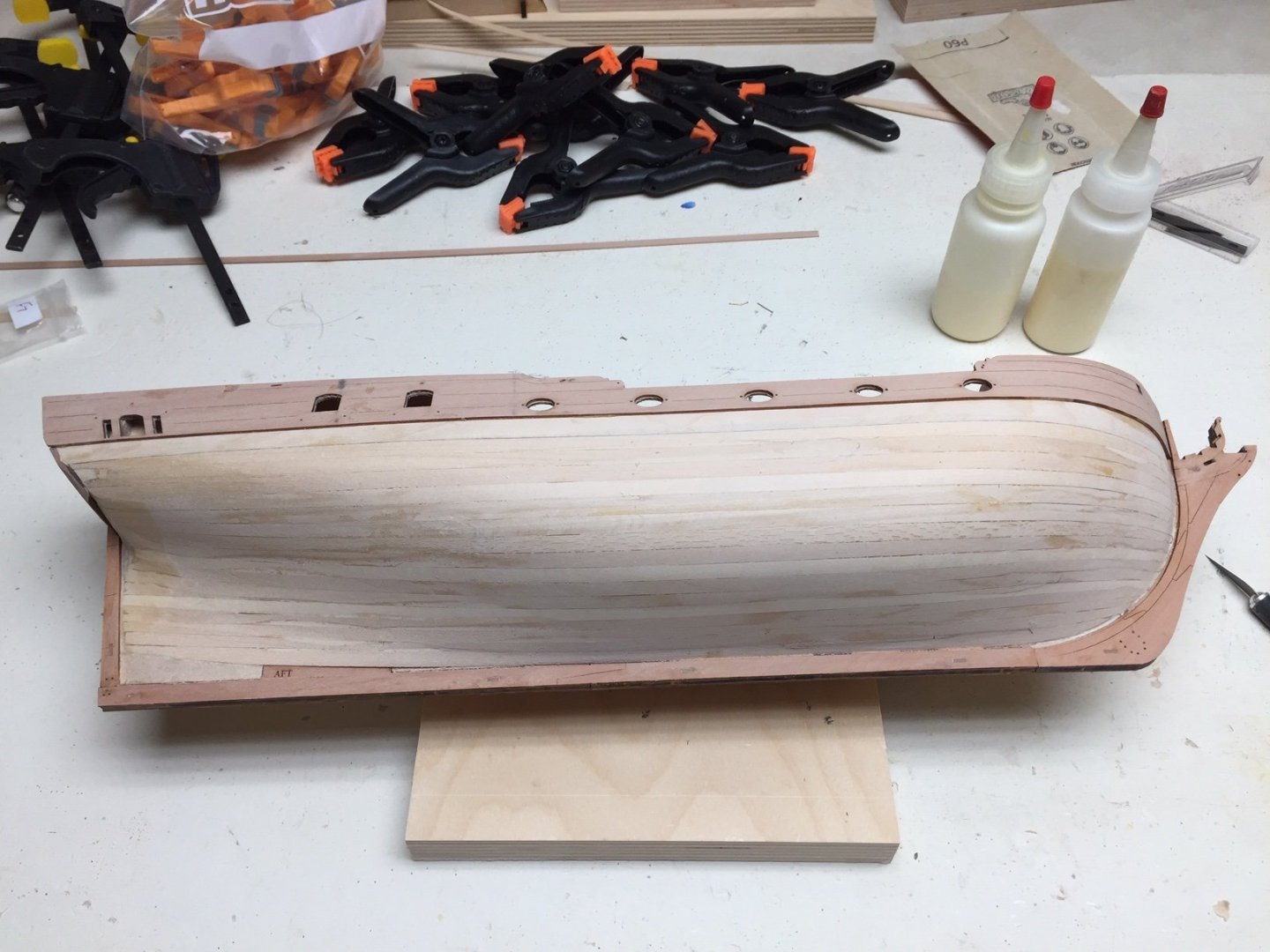 Ready_for_Planking_2nd_Layer.JPG